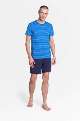 Pijama model 151573 Henderson albastru
